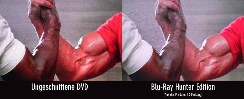 predator-vergleich-dvd-bluray_2