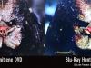 predator-vergleich-dvd-bluray_5