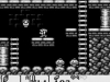 the-legend-of-zelda-links-awakening_5